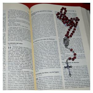 Cursos y talleres escuela de a fe