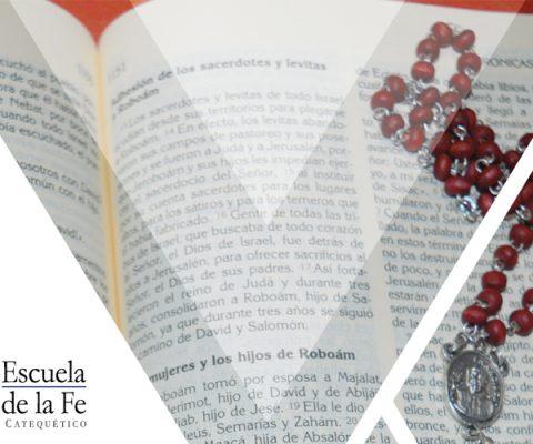 Sagrada escritura II