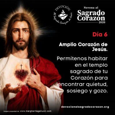 Novena Sagrado Corazon 6